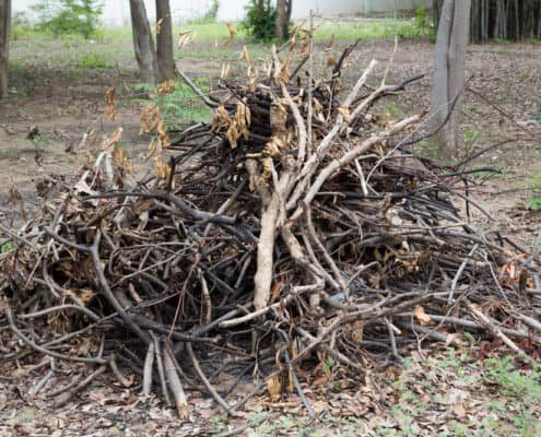 Yard Waste Removal Victoria BC