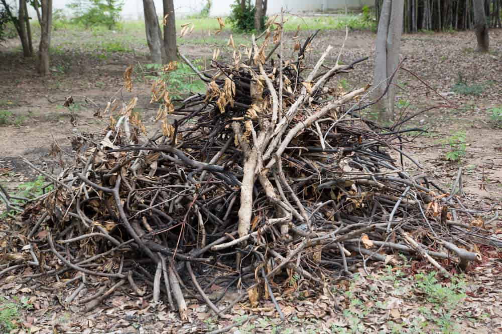 Island Junk Solutions - Yard Waste Removal Victoria BC